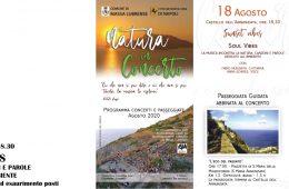 Sunset-Vibes,-canzoni-e-racconti-sull'ambiente-a-Massa-Lubrense